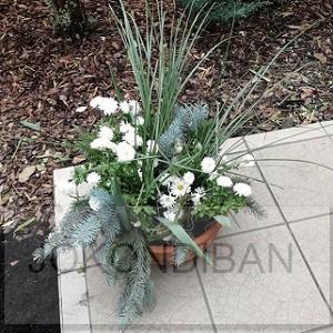Halottak napján az emlékezés virágai
